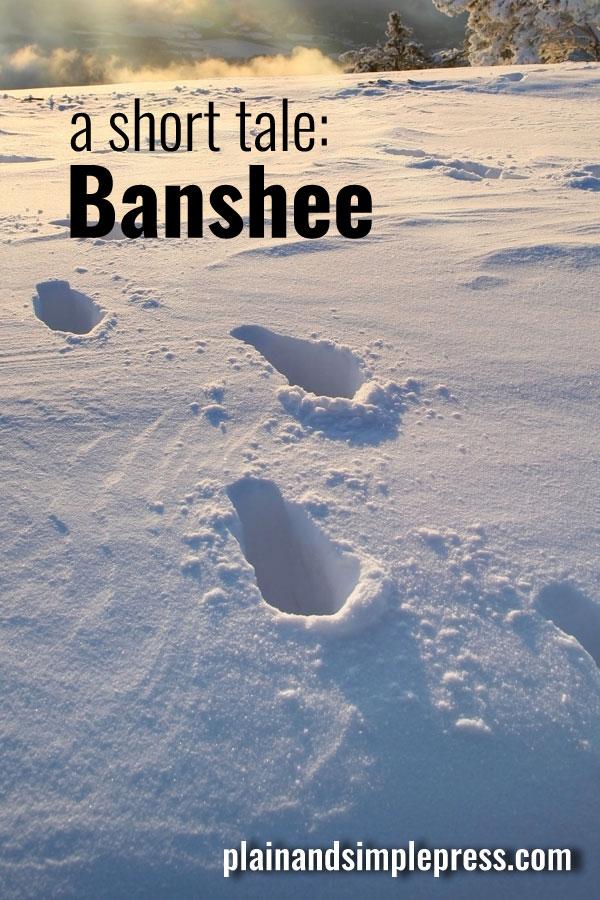 A short story: Fire-Rider Banshee